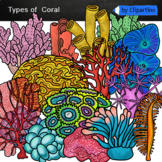 Types of Coral Clip art/Coral reef