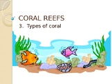 Types of Coral - (Lesson 3 of 10 Coral Reef Unit)