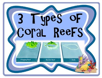 Types of Coral Reef Vocabulary Word Wall