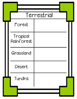 Types of Ecosystems Graphic Organizer: Terrestrial and Aquatic