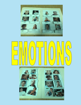Types of Emotions- File Folders on Vocabulary and Picture Match