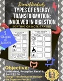 Types of Energy Transformation: Involved in Digestion