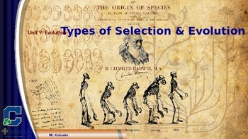 Types of Evolution & Selection