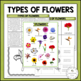 Types of Flowers | Nature Curriculum in Cards