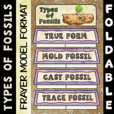 Types of Fossils Foldable - Frayer Model Format