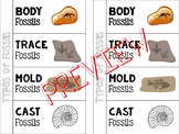 Types of Fossils Foldable for Interactive Notebook