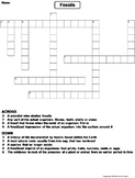 Types of Fossils Worksheet/ Crossword Puzzle