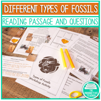 Types of Fossils - Workshop Lesson