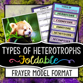 Types of Heterotrophs Foldable - Frayer Model Format