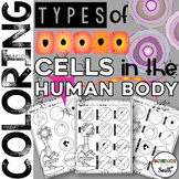 Types of Cells in the Human Body Coloring Worksheet