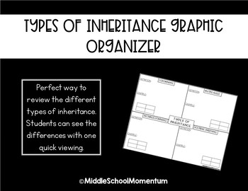 Types of Inheritances Graphic Organizer