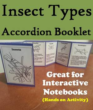 Types of Insects Activity: Interactive Notebook Foldable/ Coloring Book