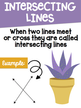 Types of Lines Math Posters with a Cactus Succulent Theme