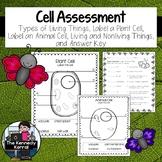 Cell Assessment