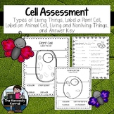 Cell Assessment
