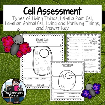 Cell Assessment {Plant and Animal Cells - Living and Nonli