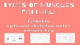Types of Muscles Foldable