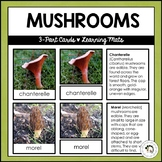 Types of Mushrooms | Nature Curriculum in Cards | Montessori