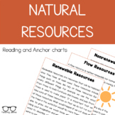 Types of Natural Resources Reading and Flow Chart