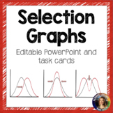 Types of Natural Selection Task Cards