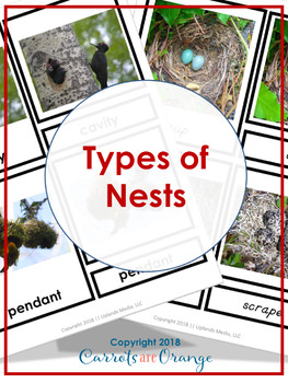 Montessori 3 Part Cards - Types of Nests