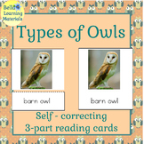 Types of Owls Self Correcting Reading Cards