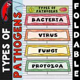 Types of Pathogens Foldable - Frayer Model Format