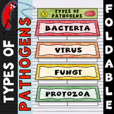 Types of Pathogens Foldable - Great for Interactive Notebooks