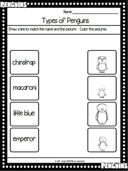 Types of Penguins Emergent Reader Book AND Interactive Activities