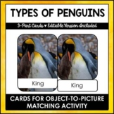 Types of Penguins - 3 - Part Cards - Montessori - Editable