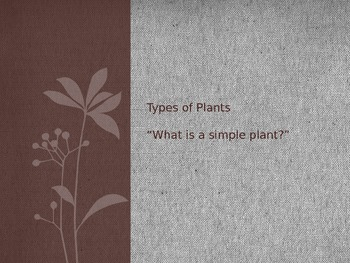 Types of Plants, Lesson 2