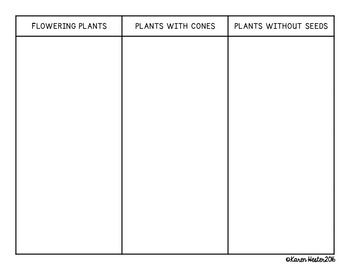Types of Plants: Science Concept Sorts