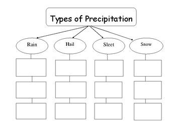Types of Precipitation Graphic Organizer