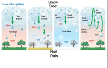 Types of Precipitation Labeling Activity - SMART Notebook