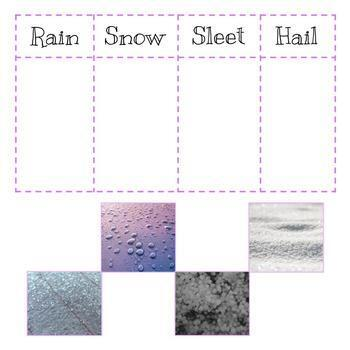 Types of Precipitation Matching & Sorting | Paper & Digital | NGSS