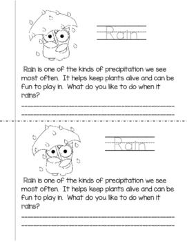 Types of Precipitation Mini Book