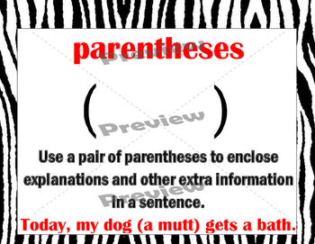 Zebra Types of Punctuation Posters
