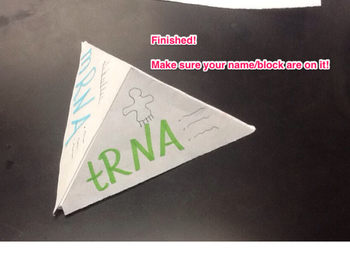 Types of RNA Foldable Instructions