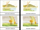 Types of Rainbows Montessori 4 Part Cards