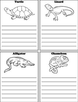 Types of Reptiles Activity: Interactive Notebook Foldable/ Coloring Book