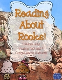 Rocks Differentiated Reading Passages