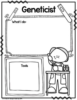 Types of Scientists Graphic Organizer