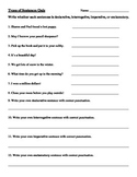 Types Of Sentences Quiz Worksheets & Teaching Resources | TpT