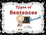 "Types of Sentences DISPLAY POSTERS ""Advanced Terms"""