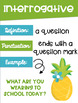Types of Sentences Posters with a *Flamingo Pineapple* Theme