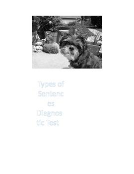 Types of Sentences Pre-Assessment