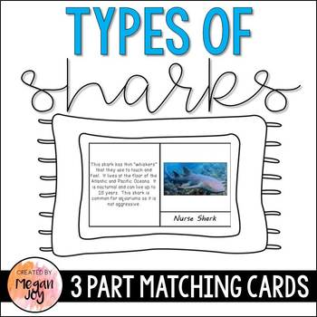 Types of Sharks 3 Part Cards