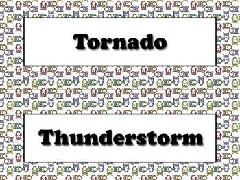 Types of Storms and Severe Weather Vocabulary Strips - Owls Theme