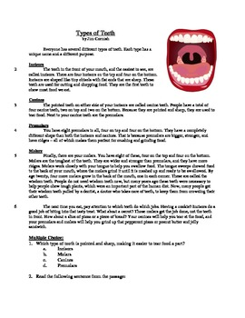 Types of Teeth - Informational Text Test Prep