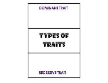 Types of Traits